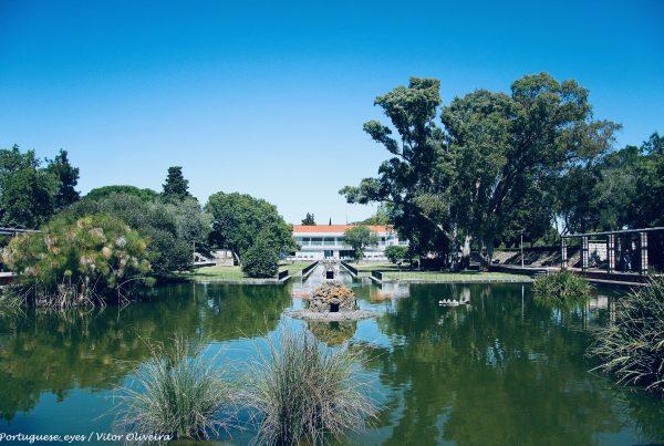jardim de montes claros lisboa portugal2
